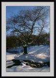 Winter 2005 30