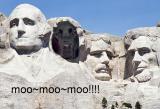 Mt. Moomore