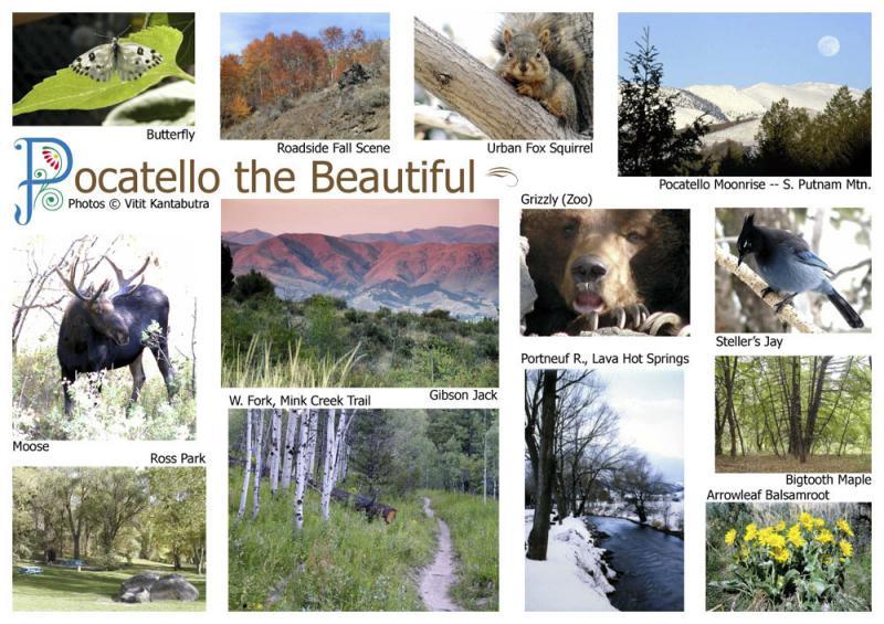 Pocatello Postcard 4.jpg