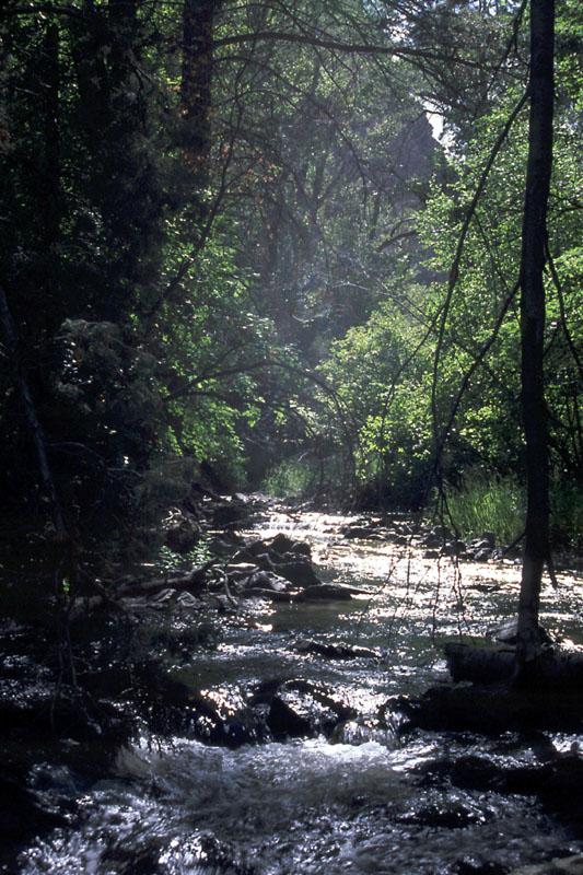 Garden Creek at Garden Creek Gap, near Pocatello, Idaho
