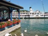 Schiffssteg Luzern