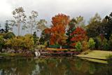 overview o gardens copy.jpg