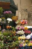 Flower vendor, Valletta