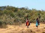 Colorful Maasai walking along the road
