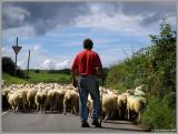 TRAFFIC CONGESTION NORTH WALES