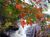 Waterfall at Wakefield Mill