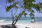 Beach near Majahual -  Near Costa Maya