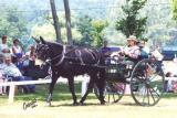 lorenzo-2002