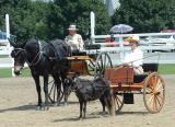 dutchess county fair - 2004