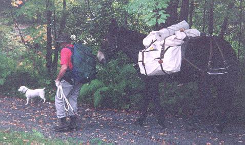 packing into deer camp