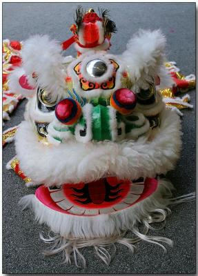 Traditional Chinese New Year lion costume