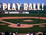 Spring Training: Arizona Diamondbacks vs. Chicago Cubs