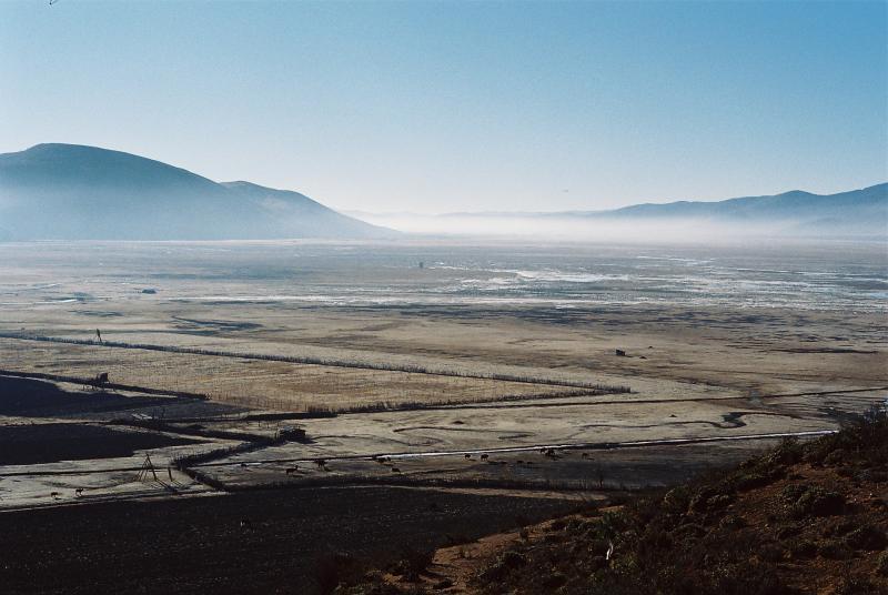 Napa Lake in the Mist