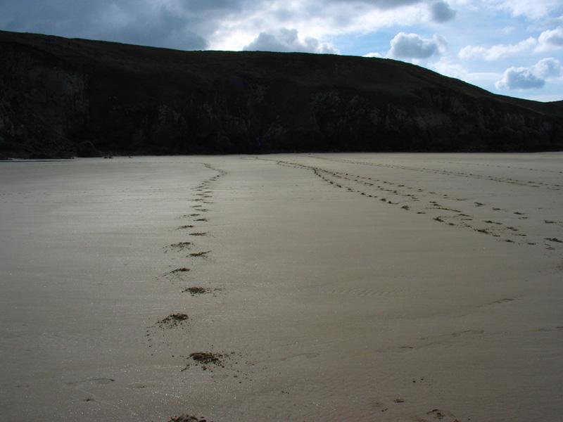 La plage des Trépassés