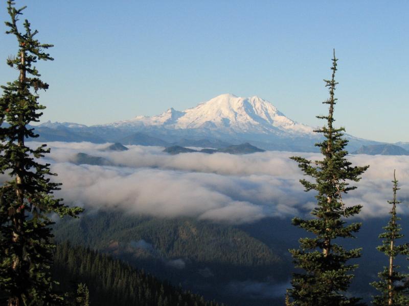 Mt. Rainier on the climb up Thorpe Mt.