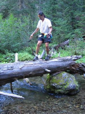 Another creek crossing