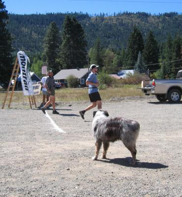 Jack the dog watches Todd Salzer finish