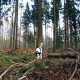 Joop's Dog Log - Tuesday Mar 09