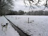 Joop's Dog Log - Saturday Jan 03