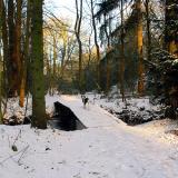 Joop's Dog Log - Friday Jan 02