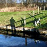 Joop's Dog Log - Tuesday Mar 16