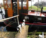 Joop's Dog Log - Friday Mar 19