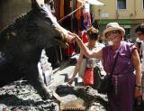 Florence. Julia pets the bonze good-luck boar