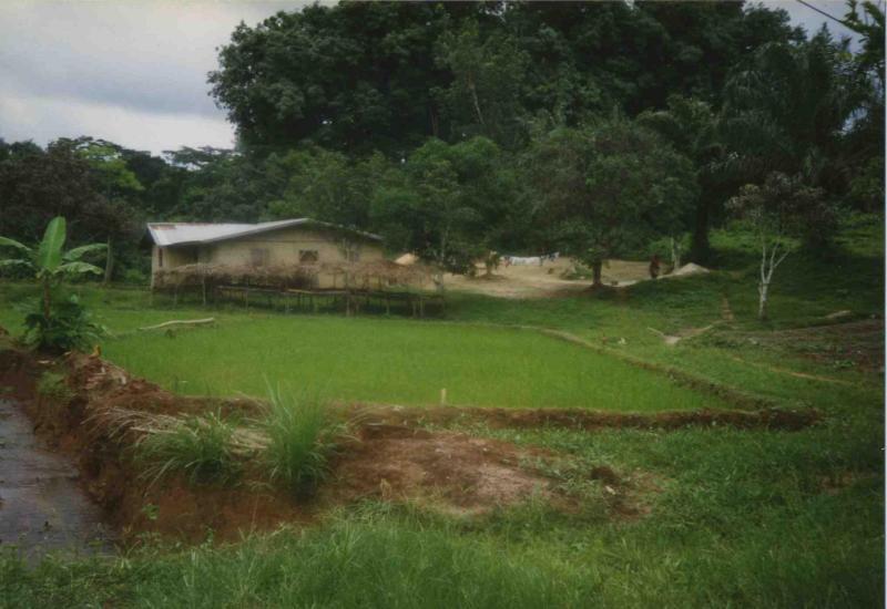liberia14.jpg