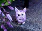 purple pig stands alone