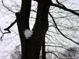 central park snow heart