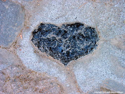 3.07 5 heart obsidian