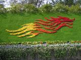 Hong Kong Flower Show 2004