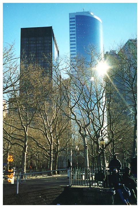 Winter Sun in NY City