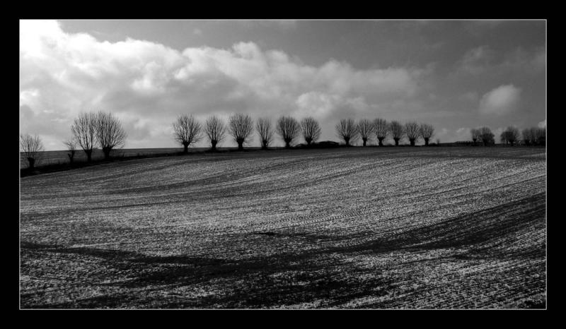 paysage fétiche sous la neige