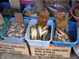 You Like Dried Fish?