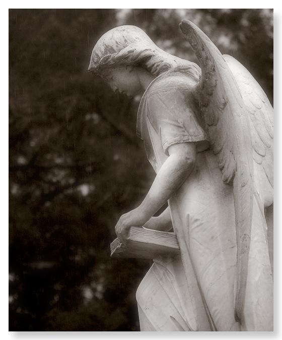 The Turning Angel