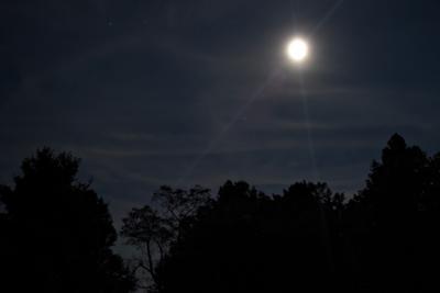 Moonscape 9-1.jpg