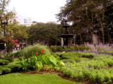 Garden at Cadman