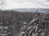 Wesley Hill Nature Preserve 2