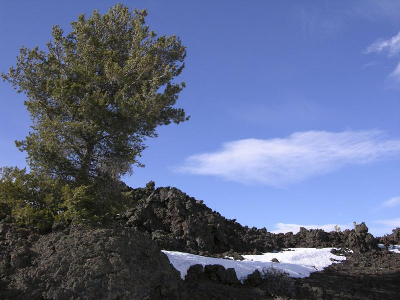 Craters of the Moon DSCN0303.jpg
