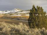 Pocatello Creek Road Roadside View DSCN0223.jpg