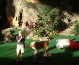 Lassie being lazy, Universal Studios, Orlando, FL