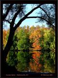 Autumn Spritz