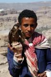 Boy with a small falcon, Yemen