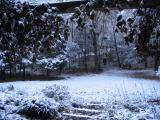 The first snow of winter
