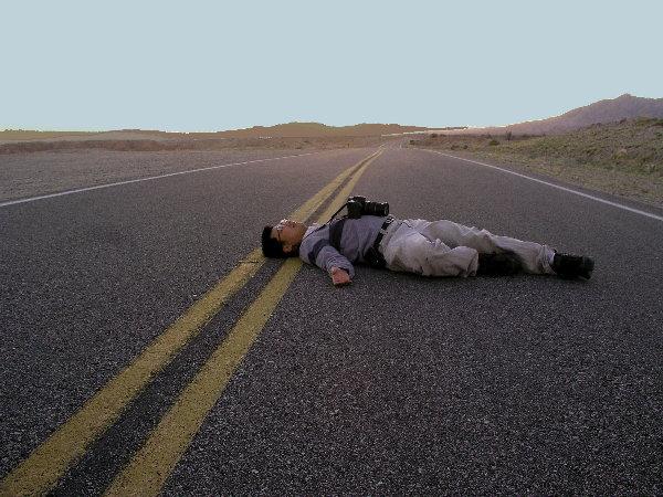 Photographic Road Kill