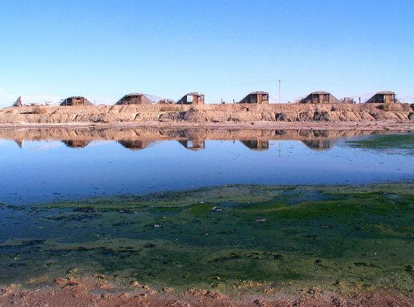 Salton Sea - Dead Mans Paradise