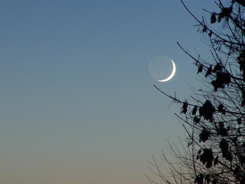 Minimal Moon<br>by Carmen