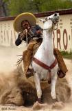 Horse Reining, or Cala de Caballo