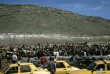 Kars to Hopa cattle market